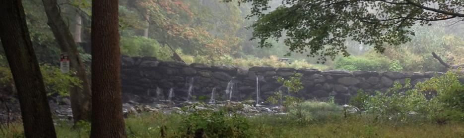 Ridley Creek Falls